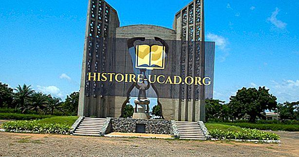 Togon kulttuuri