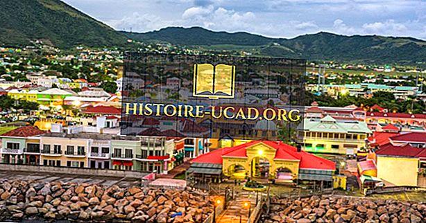 Культура Сент-Китс и Невис