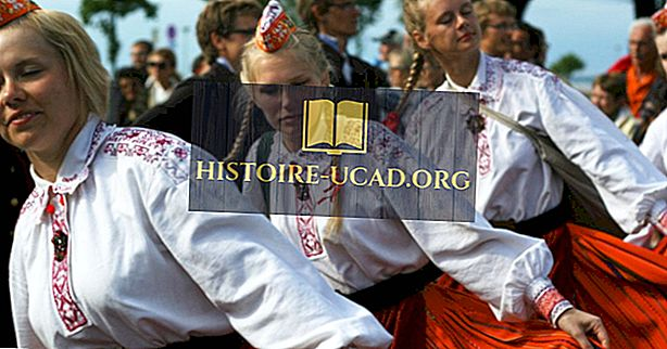 Kultúra Estónska