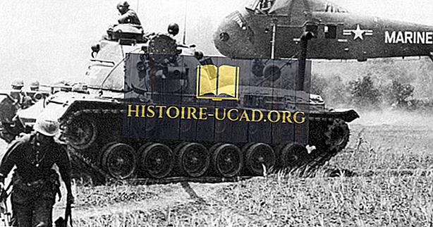 Die Schlacht von Van Tuong - Vietnamkrieg