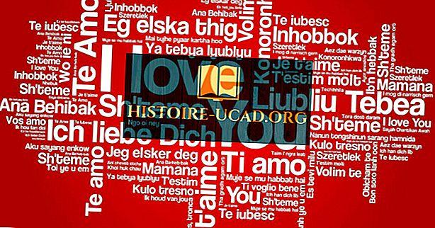 จะบอกว่าฉันรักคุณใน 20 ภาษา