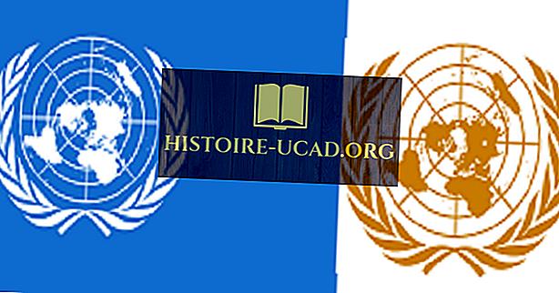 O que são as Nações Unidas?