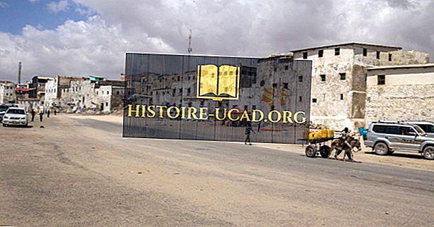 모가디슈 전투 (1993 년 작전 고딕 뱀)