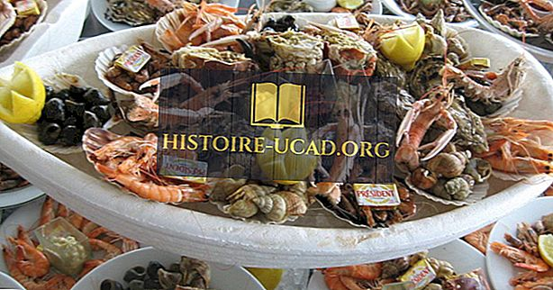 منتجات المأكولات البحرية الأكثر شعبية في الولايات المتحدة