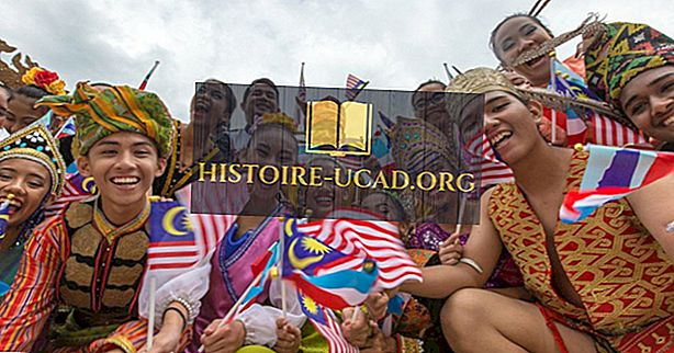 Етничке групе Малезије