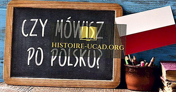 Které jazyky se mluví v Polsku?