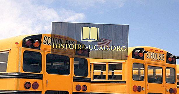 ما نوع نظام التعليم في الولايات المتحدة؟