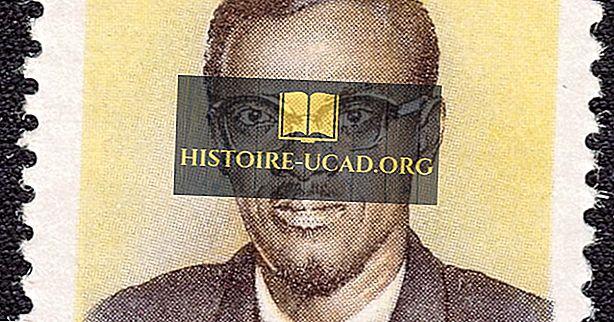 Wer war der erste Premierminister des Kongo?