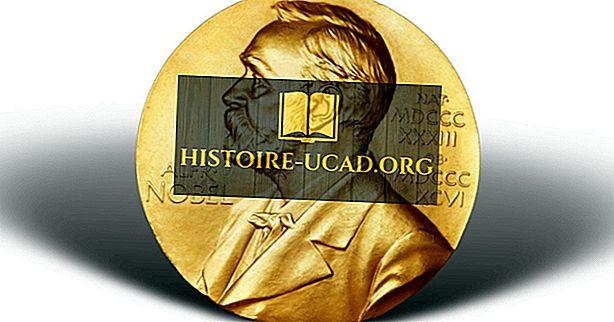 Kaj je Nobelova nagrada?