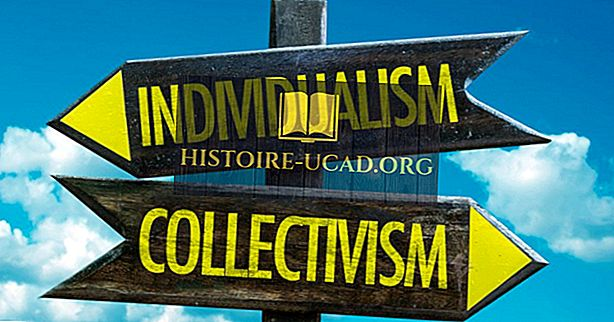 Mis on kollektivism?