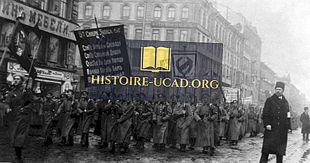 Mis oli veebruari revolutsioon?