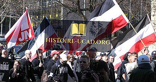 Le mouvement néo-nazi