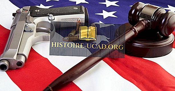 Nacionalinė šautuvų asociacija (NRA)