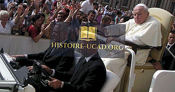 Pikim teenindavad paavstid katoliku kiriku ajaloos