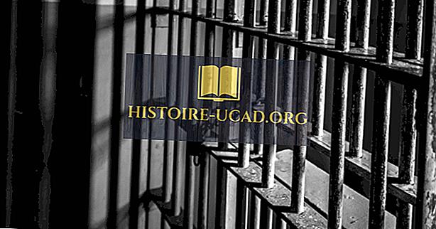Уровень лишения свободы по расам, этническому происхождению и полу в США