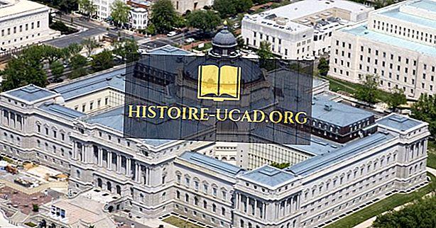 Les plus grandes bibliothèques aux États-Unis