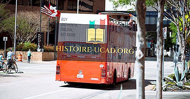 społeczeństwo - Najlepsze systemy autobusowe w Stanach Zjednoczonych