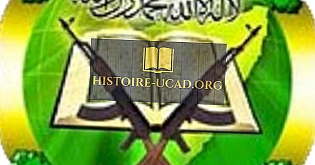 Al-Shabaab - międzynarodowe organizacje terrorystyczne