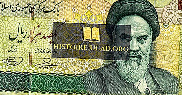 Revolución iraní: causas, eventos y efectos