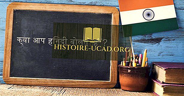 Jaký jazyk je mluvený v Indii?