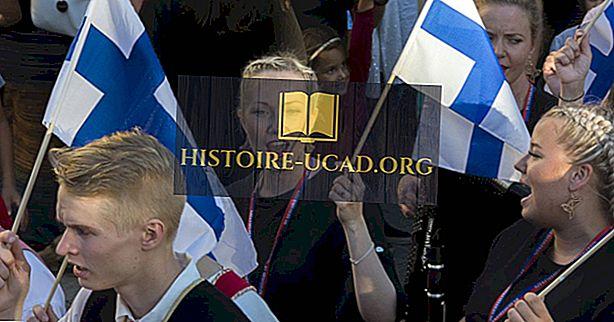 Етничке групе и националности у Финској