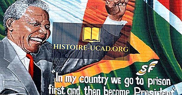 Phong trào chống phân biệt chủng tộc - Lãnh đạo, nhà hoạt động và những người ủng hộ đáng chú ý
