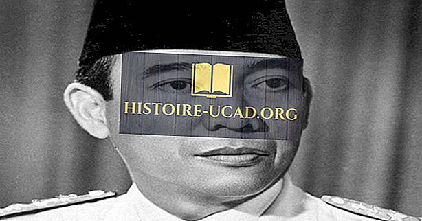 Prezydenci Indonezji przez historię