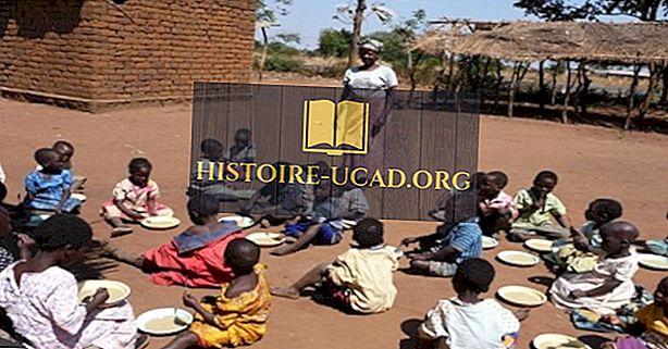Causas principales de muerte en Malawi
