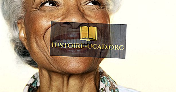 społeczeństwo - Stany USA ze starszymi populacjami