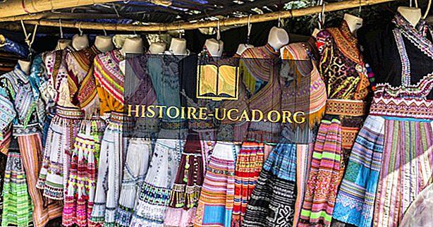 Najveće etničke skupine u Vijetnamu