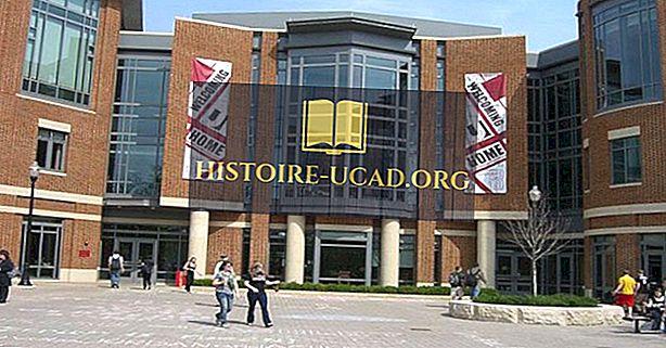 Suurimmat yliopistot Yhdysvalloissa ilmoittautumisen kautta