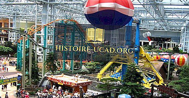 أكبر مراكز التسوق في الولايات المتحدة