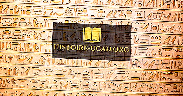 المجتمع - الشعب المصري - ثقافات العالم