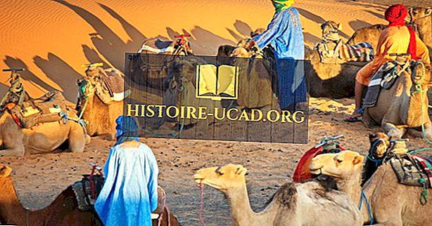 الجماعات العرقية في المغرب