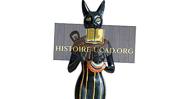 Động vật Ai Cập cổ đại