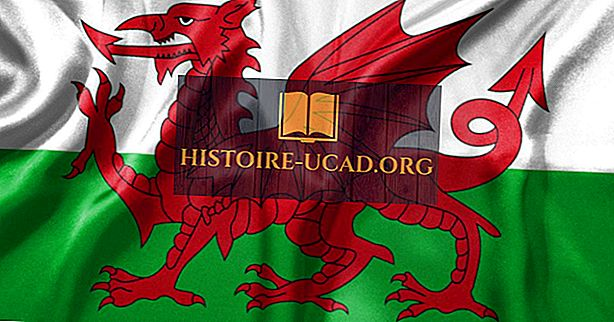 общество - The Welsh: Cultures of the World
