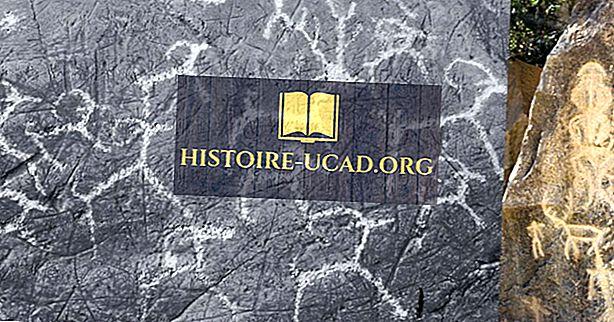 Mis oli ülemine paleoliitiline revolutsioon?