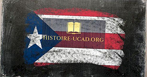 Katere jezike govorijo v Puerto Ricu?