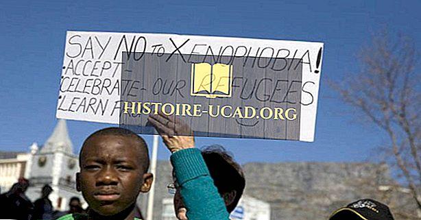 Ксенофобия в Южна Африка