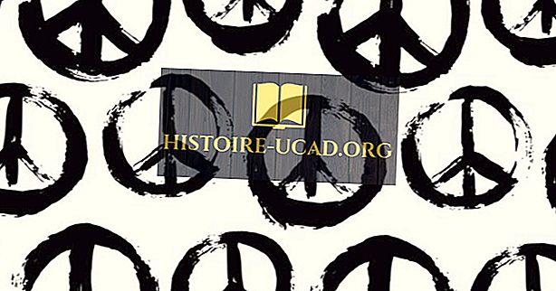 Hvad var modkultur fra 1960'erne og 1970'erne?