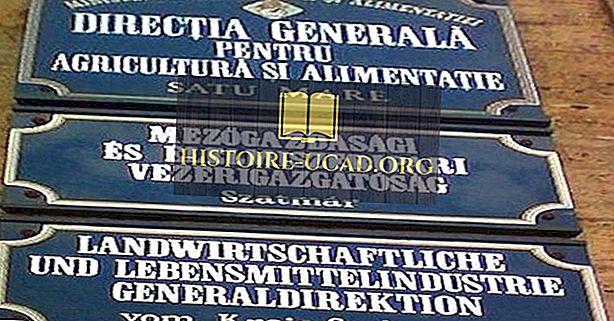 На каком языке говорят в Румынии?