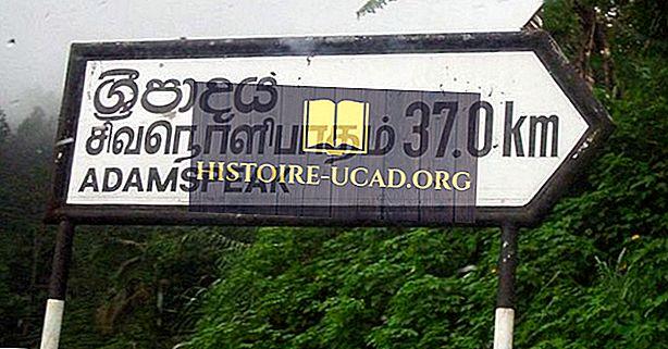 Milliseid keeli räägitakse Sri Lankal?