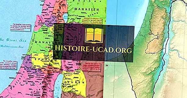 ماذا كانت اثنا عشر من قبائل إسرائيل؟