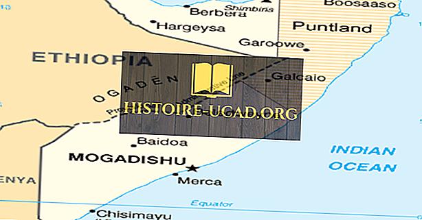 Hvad er Puntlands delstat Somalia?