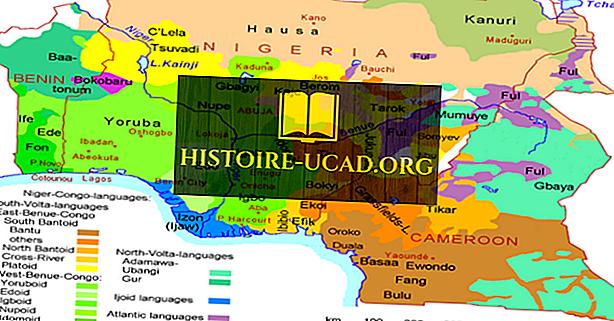 Mitä kieliä puhutaan Kamerunissa?