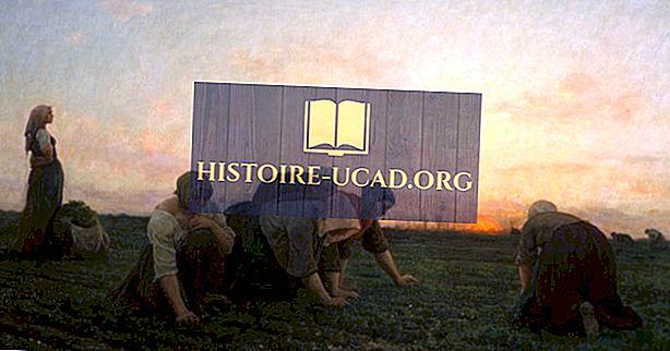 Арт движения в историята - реализъм Чл