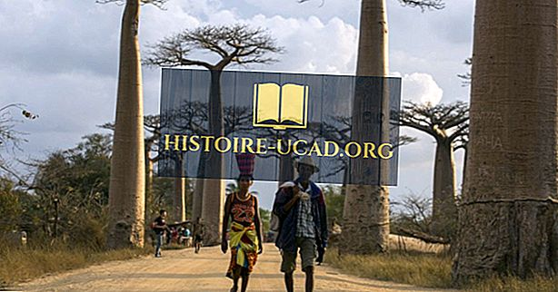 Ethnische Gruppen von Madagaskar