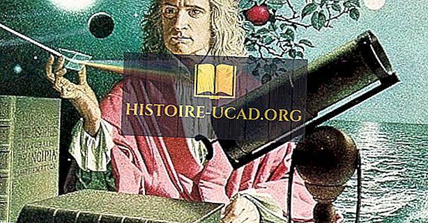 Kas buvo XVI-ojo amžiaus mokslinė revoliucija?