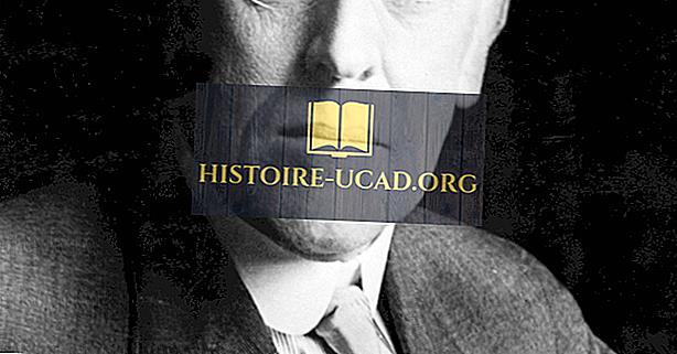 Woodrow Wilson - Présidents américains dans l'histoire
