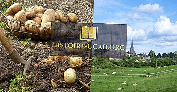 Шотландската селскостопанска революция и разрешенията на низината и планините